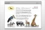 Braas Incentive Programme - E-mailing Teaser